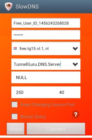 Slow DNS для Android