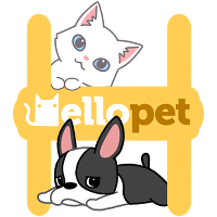 Hello pet для Android