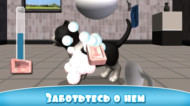 Daily Kitten для Android
