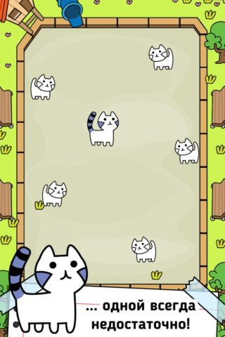 Cat Evolution для Android